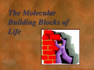 The Molecular Building Blocks of Life