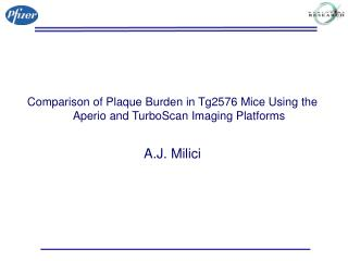 Comparison of Plaque Burden in Tg2576 Mice Using the Aperio and TurboScan Imaging Platforms