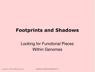 Footprints and Shadows