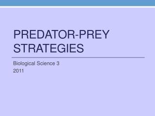 Predator-Prey Strategies