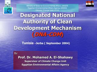 Designated National Authority of Clean Development Mechanism  ( DNA-CDM )