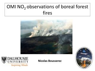 OMI NO 2  observations of boreal forest fires