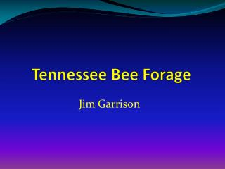 Tennessee Bee Forage