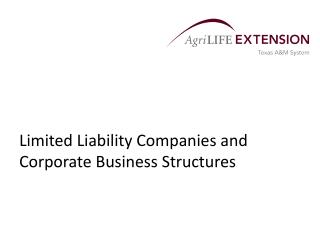 Limited Liability Companies and Corporate Business Structures