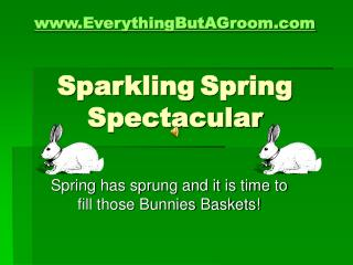 EverythingButAGroom Sparkling Spring Spectacular