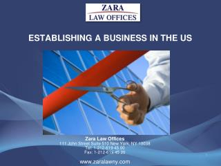 ESTABLISHING A BUSINESS IN THE US