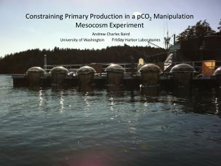 Constraining Primary Production in a pCO 2 Manipulation  Mesocosm  Experiment