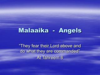 Malaaika  -  Angels
