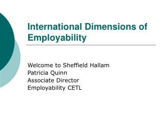 International Dimensions of Employability
