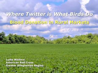 Where Twitter is What Birds Do Blood Donation in Rural Markets