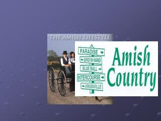 Amish world