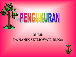 OLEH: Dr. NANIK SETIJOWATI, M.Kes