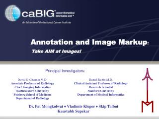 Annotation and Image Markup:    Take AIM at Images