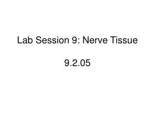 Lab Session 9: Nerve Tissue 9.2.05