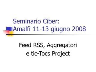 Seminario Ciber:  Amalfi 11-13 giugno 2008