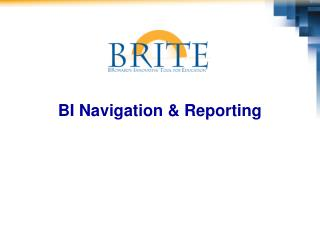 BI Navigation & Reporting