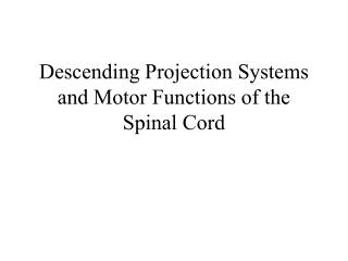 Descending Projection Systems and Motor Functions of the Spinal Cord