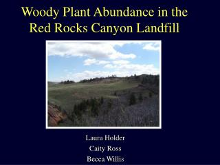 Woody Plant Abundance in the Red Rocks Canyon Landfill