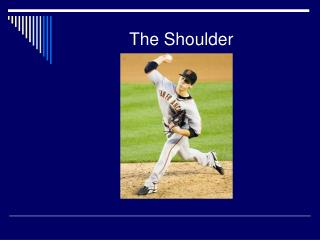 The Shoulder