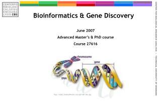 Bioinformatics & Gene Discovery