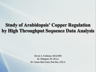 Study of Arabidopsis' Copper Regulation by  High Throughput Sequence Data Analysis