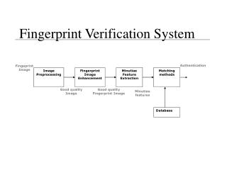 Fingerprint Verification System