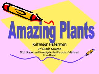 Kathleen Peterman 2 nd  Grade Science