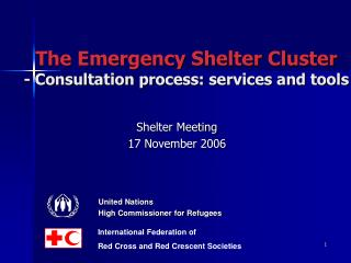 The Emergency Shelter Cluster - Consultation process: services and tools