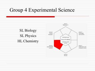 Group 4 Experimental Science