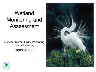 Wetland Monitoring and Assessment National Water Quality Monitoring Council Meeting