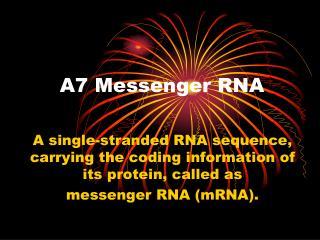 A7 Messenger RNA
