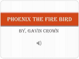 Phoenix the fire bird