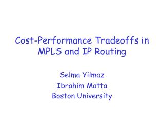Cost-Performance Tradeoffs in MPLS and IP Routing