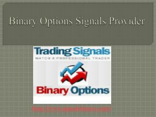 Binary Options Signals Provider