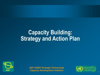 Capacity Building:  Strategy and Action Plan