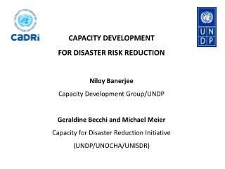 CAPACITY DEVELOPMENT  FOR DISASTER RISK REDUCTION  Niloy Banerjee Capacity Development Group/UNDP