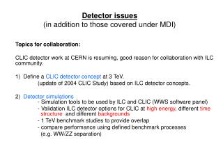 Detector issues (in addition to those covered under MDI)