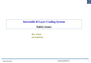 Insertable B Layer Cooling System Safety issues