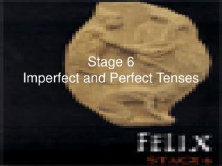 Stage 6 Imperfect and Perfect Tenses