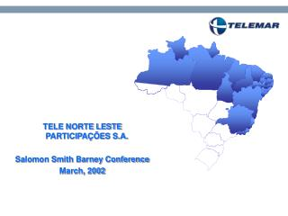 TELE NORTE LESTE PARTICIPAÇÕES S.A. Salomon Smith Barney Conference March, 2002