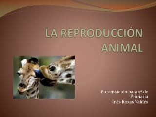 LA REPRODUCCIÓN ANIMAL