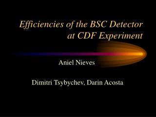 Efficiencies of the BSC Detector at CDF Experiment
