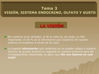Tema 3 VISIÓN, SISTEMA ENDOCRINO, OLFATO Y GUSTO