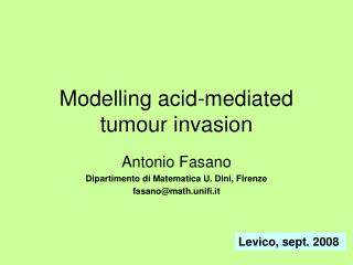 Modelling acid-mediated tumour invasion