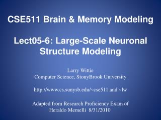 CSE511 Brain & Memory Modeling Lect05-6:  Large-Scale Neuronal Structure Modeling