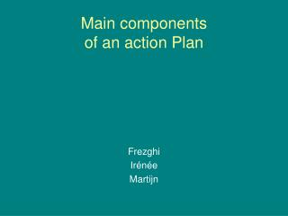 Main components  of an action Plan