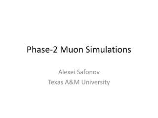 Phase-2  Muon  Simulations