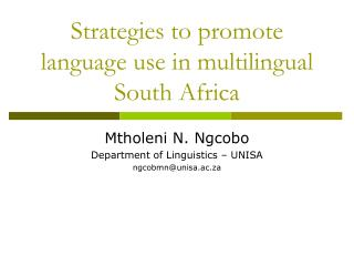 Strategies to promote language use in multilingual South Africa