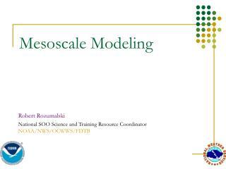Mesoscale Modeling