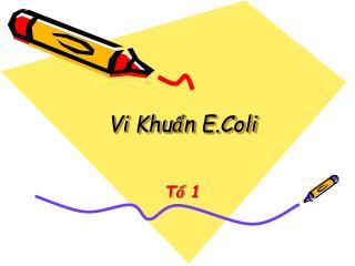 Vi Khuẩn E.Coli